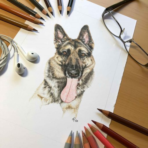 Pet Portrait Art Dog