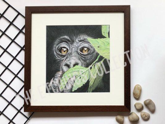 Wall Art Print Gorilla