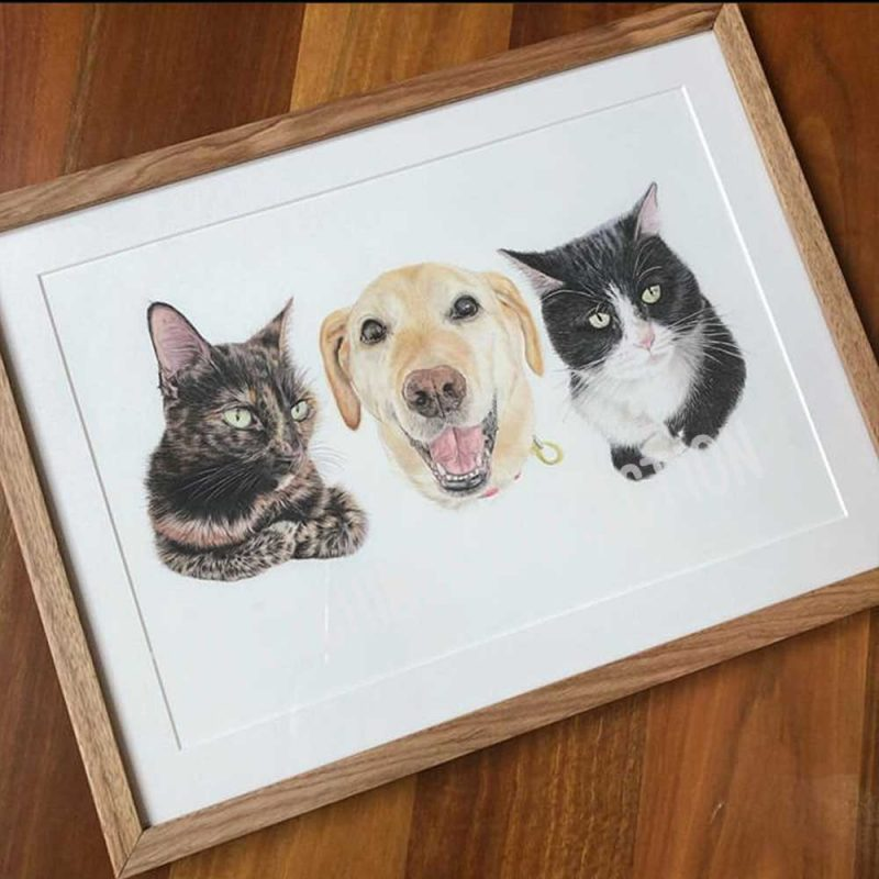 Pet Portrait Testimonial