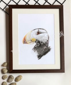 Puffin Artwork