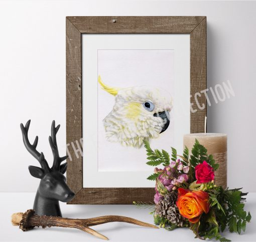 Wildlife Wall Art