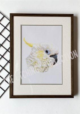 Cockatoo Artwork